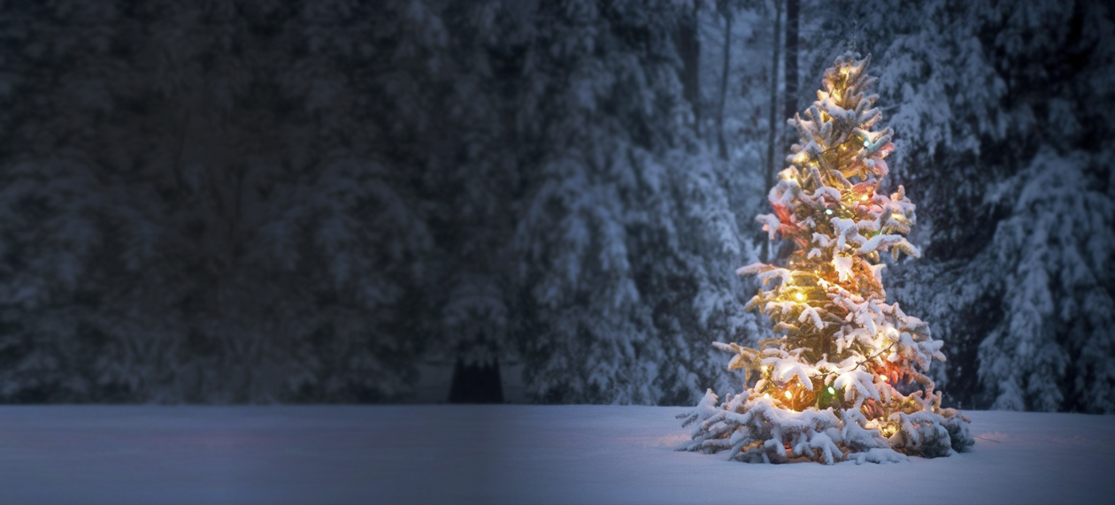 Gutter Christmas Lights